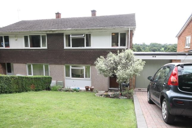 Thumbnail Property to rent in South Hayes, Bristol