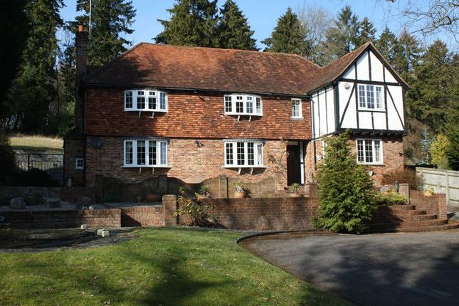 Thumbnail Detached house to rent in Box Lane, Hemel Hempstead