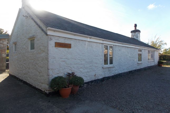 Thumbnail Bungalow to rent in Hen Efail Glascoed Road, Bodelwyddan, Abergele