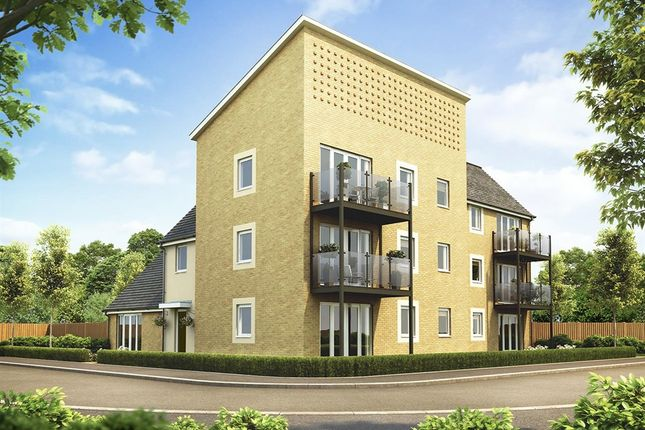 """Thumbnail Flat for sale in """"Apartment Block 3"""" at Plover Road, Stanway, Colchester"""
