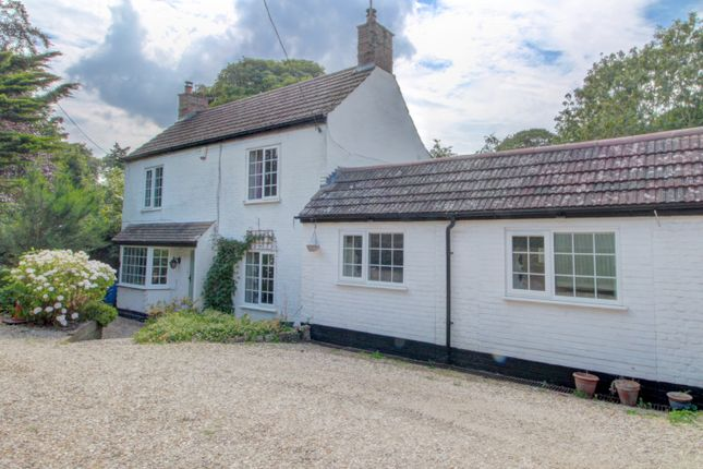 Thumbnail Detached house for sale in Lynn Road, Tottenhill, King's Lynn