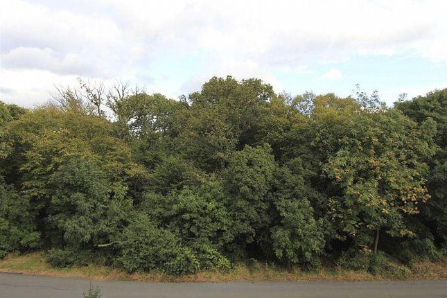 Exterior of Crescent Road, London E4