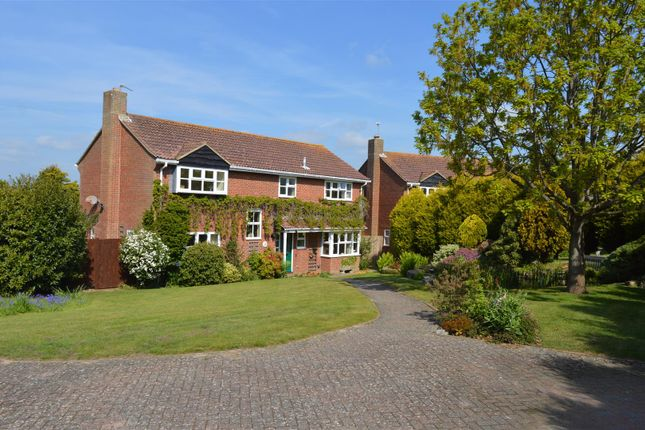 Thumbnail Detached house for sale in Coverdale Avenue, Bexhill-On-Sea