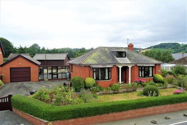 Thumbnail Bungalow for sale in Roseville, Castle Caereinion, Powys