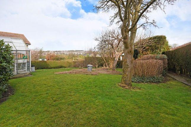 Garden of Hallowes Lane, Dronfield, Sheffield S18