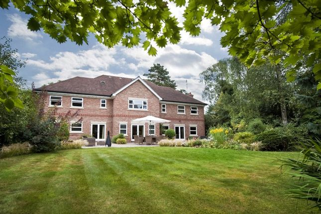 Thumbnail Detached house for sale in Winkfield Road, Ascot, Berkshire