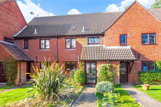 Thumbnail Terraced house for sale in Clare Mead, Rowledge, Farnham, Surrey