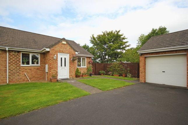 Thumbnail Bungalow for sale in The Showfield, Haydon Bridge, Hexham