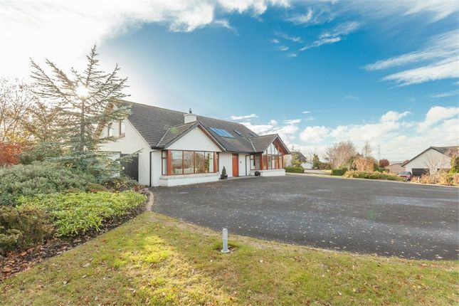 Thumbnail Detached house for sale in Waterloo Road, Lisburn, County Antrim