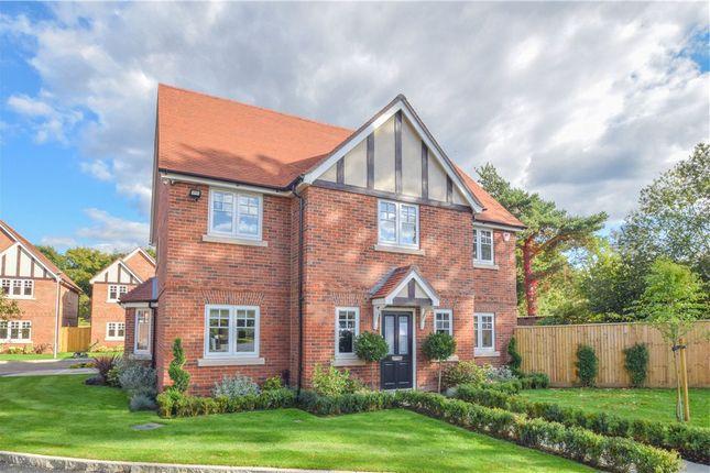 Thumbnail Detached house for sale in Oak Apples, Elgar Avenue, Crowthorne