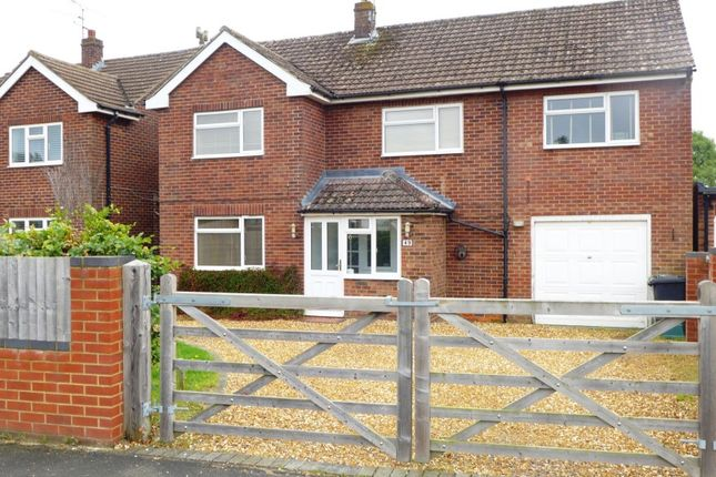 Thumbnail Detached house for sale in Belle Vue Road, Old Basing, Basingstoke