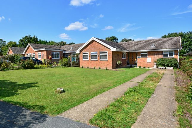 Thumbnail Detached bungalow for sale in The Paddocks, Normandy, Guildford