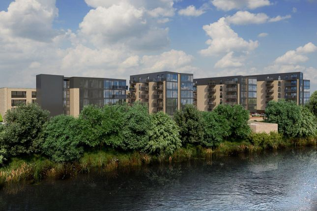 "Thumbnail Flat for sale in ""Cosmos"" at Hamilton Drive, Glasgow"