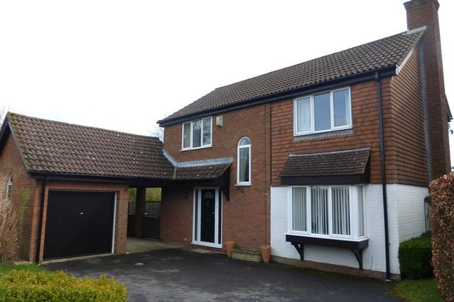Thumbnail Property to rent in Home Close, Chiseldon, Swindon
