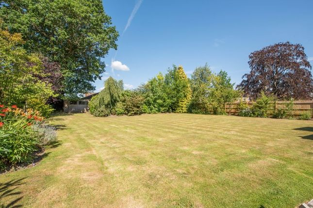 Photo 15 of Forest Road, East Horsley, Leatherhead KT24
