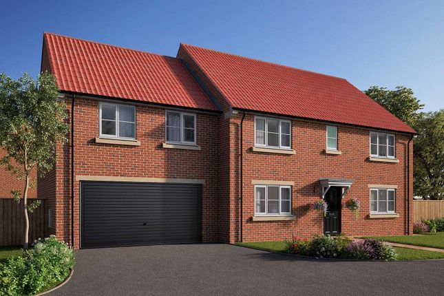 "Thumbnail Detached house for sale in ""The Asenby"" at Station Road, Kirk Hammerton, York, Kirk Hammerton"