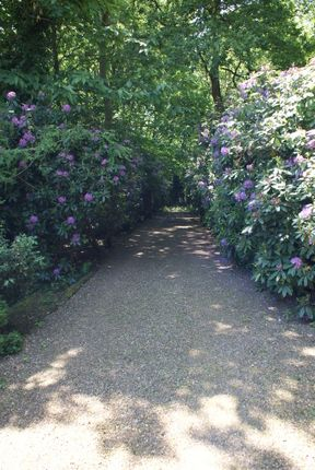 Photo 15 of Rodona Road, St George's Hill, Weybridge, Surrey KT13