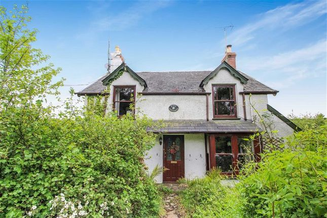Thumbnail Detached house for sale in Horns Cross, Bideford