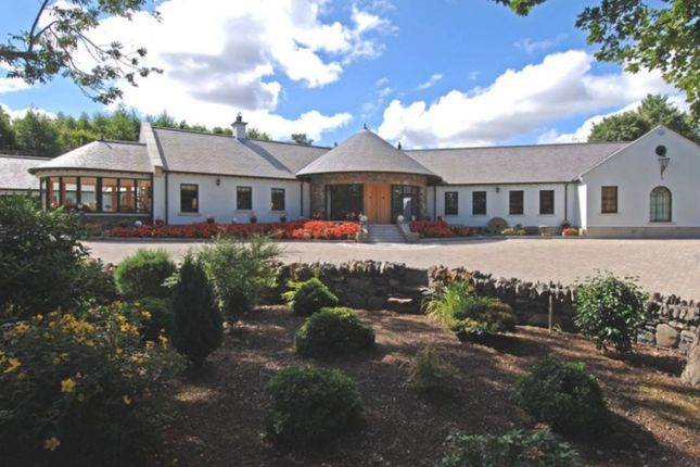 Detached house for sale in Mearne Road, Downpatrick, County Down
