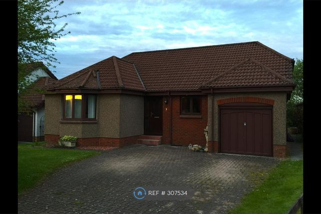Thumbnail Bungalow to rent in Lathro Park, Kinross