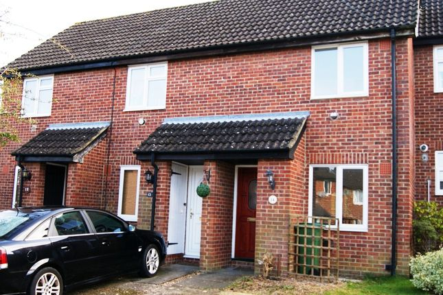 Thumbnail Terraced house to rent in Exeter Close, Basingstoke