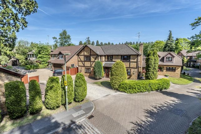 Thumbnail Detached house for sale in Augustus Gardens, Camberley