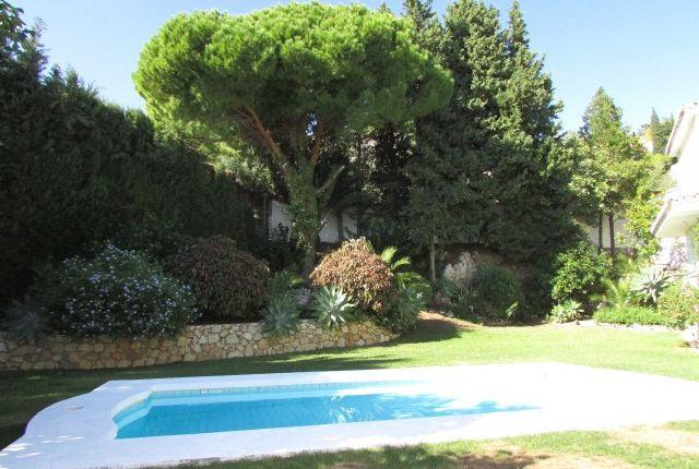 Img_5957 of Spain, Málaga, Benalmádena