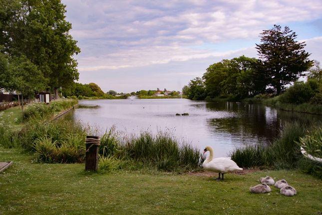 Photo 15 of Fishery Lane, Hayling Island PO11
