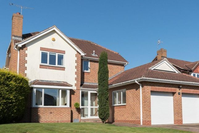 Thumbnail Detached house for sale in Berwick Close, Walton, Chesterfield