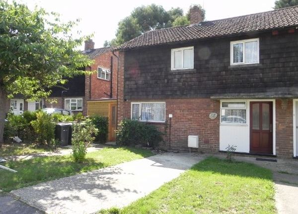 Semi-detached house to rent in Cabell Road, Guildford