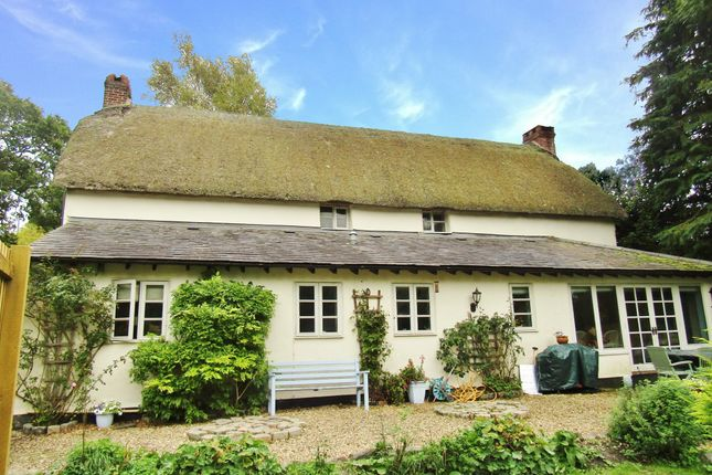 Thumbnail Cottage to rent in Cheriton Bishop, Near Exeter