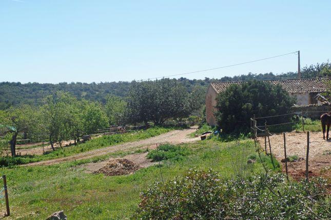 Land for sale in Albufeira, Albufeira, Portugal