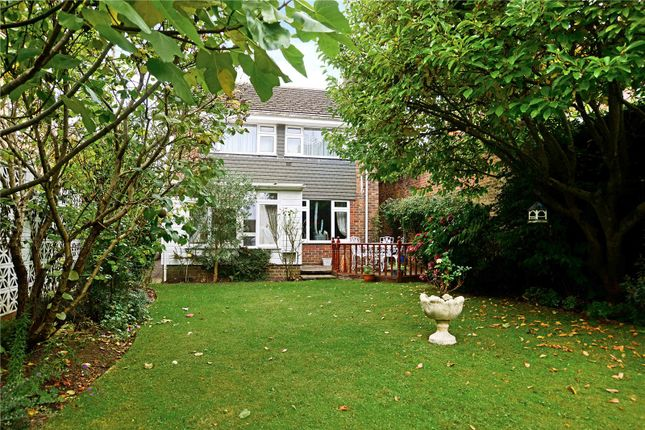 Thumbnail Detached house for sale in Chesholt Close, Fernhurst, Haslemere, West Sussex