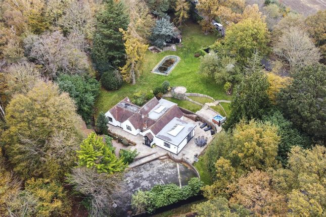 Thumbnail Detached house for sale in Weald Road, South Weald, Brentwood, Essex