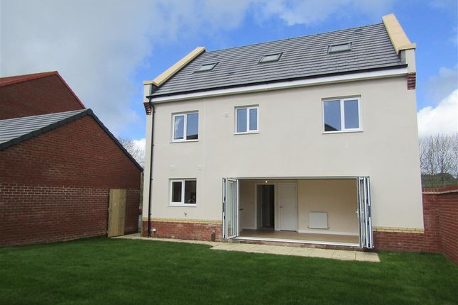 Thumbnail Detached house for sale in Ashburton Road, Newton Abbot
