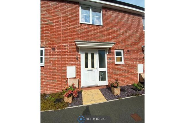 2 bed terraced house to rent in Kemps Field, Cranbrook EX5