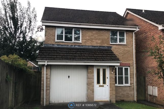 3 bed detached house to rent in Sycamore Avenue, Swansea Vale, Swansea SA7