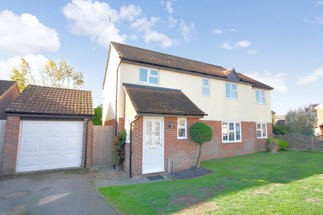 Thumbnail Detached house for sale in Kittiwake Drive, Heybridge, Maldon