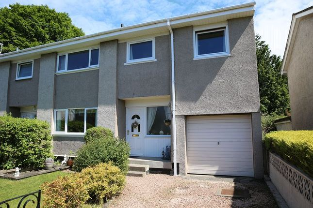 Thumbnail Property for sale in Hamilton Terrace, Broughty Ferry, Dundee