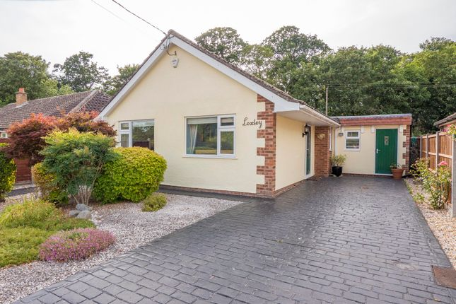 Thumbnail Detached bungalow for sale in Long Melford, Sudbury, Suffolk