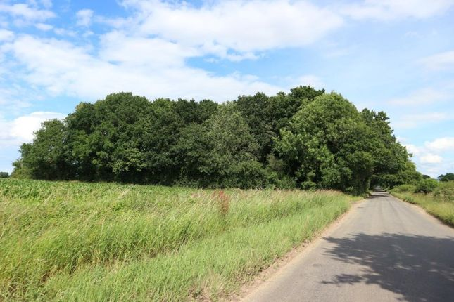 Thumbnail Land for sale in Woodland, Reymerston Hall, Reymerston, Norfolk