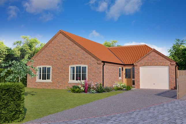 Thumbnail Detached bungalow for sale in Blackthorn Lane, Off Stanhope Road, Horncastle