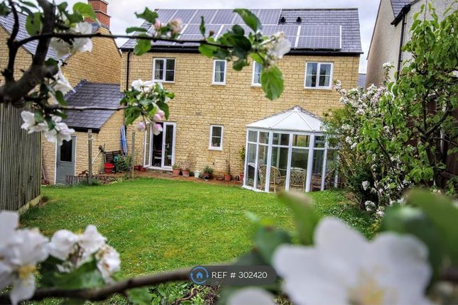 Thumbnail Detached house to rent in Jennings Orchard, Cheltenham