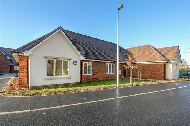 Thumbnail Bungalow for sale in Blenheim Court, Liss, Hampshire