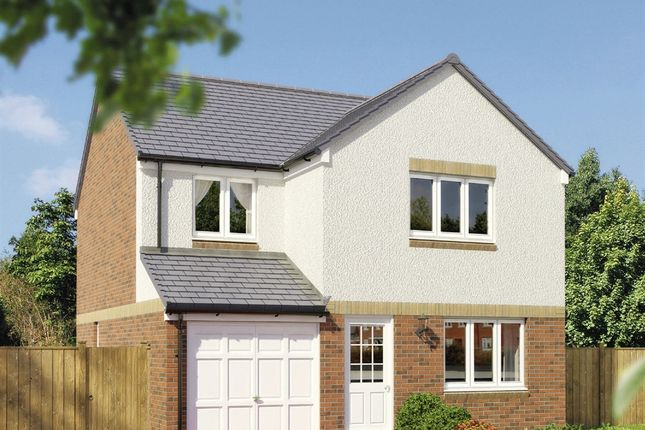 "Thumbnail 4 bedroom detached house for sale in ""The Leith"" at Grosset Place, Glenrothes"
