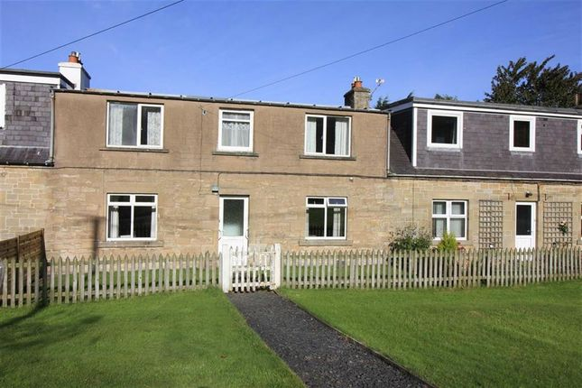 Thumbnail Terraced house for sale in Kinninghall Farm Cottages, Cavers, Hawick
