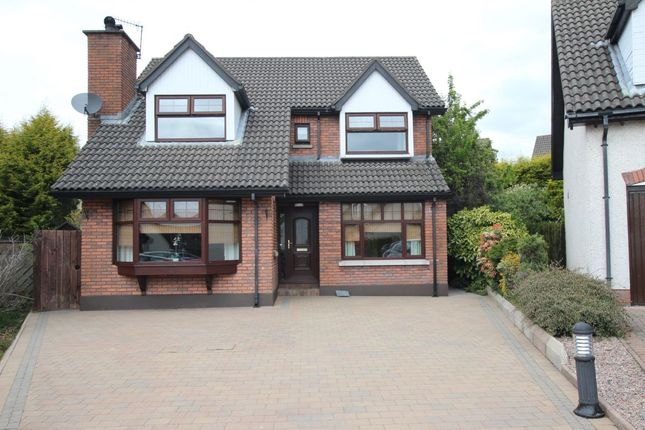 Thumbnail Detached house for sale in Burnet Park, Newtownabbey