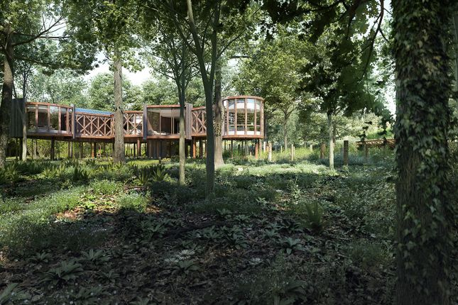 Thumbnail Property for sale in Woodlands Lodge (Building Plot), Ewen, Cirencester, Glos