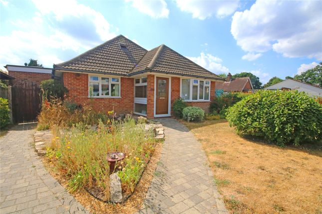 Thumbnail Bungalow for sale in Addlestone, Surrey