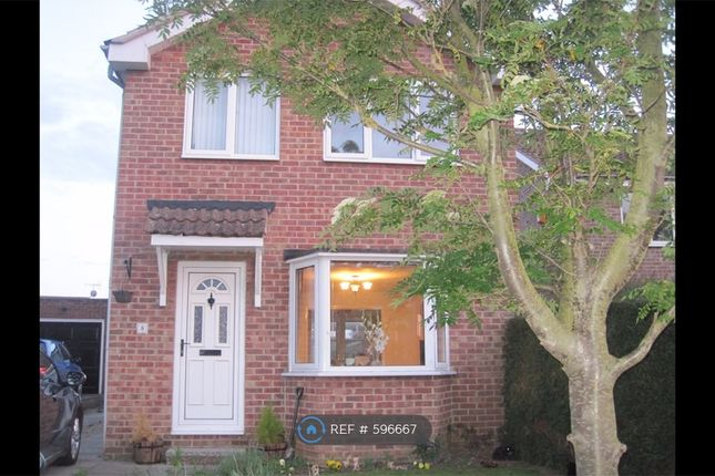 Thumbnail Detached house to rent in Newlands, Northallerton